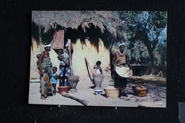 An-8 / L'Afrique En Couleur -  Scène Villageoise   - Éditions  HOA-QUI ( Échantillon Collection )  / Circulé - Cartes Postales