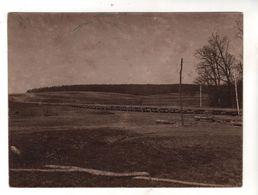 Nr.+ 354 ,  FOTO, 12 X 9 Cm,  WK I, Polen, Russland, Ukraine, Galizien - War 1914-18