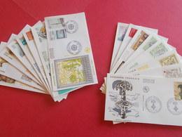 ANDORRE  1 Lot D'enveloppes 1er Jours De L' Année 1988 Et 1989 - Stamps