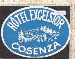 PO7275D# ETICHETTA - ADESIVI ALBERGHI - HOTEL EXCELSIOR COSENZA - Hotel Labels