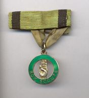 Ireland - Boy Scouts Embrodered Badge, Around 1935, Rare / 2 Scans - Scouting