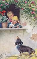 Dackel Teckel Dachshund By K.Feiertag Chien, Chiens, Cani, Hunde. Old Postcard Cpa. - Chiens