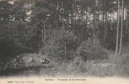Schilde 1911 - Vermaak In Des Bosschen - Uitg. Aug. BEULLENS Nr 5009 - Recto Relais Schilde - Schilde