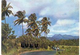 MARTINIQUE : Les Pitons Du Carbet Vus De L Acajou - Martinique