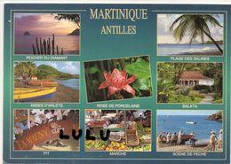MARTINIQUE : Antilles Multivues - Martinique
