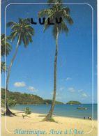 MARTINIQUE : L Anse A L Âne - Martinique