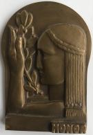 Médaille - Plaquette En Bronze Art Nouveau. O. Piette. Honor.  15e Landjuweeltornooi De Moedertaal.  55 X 80 Mm - 166 Gr - Professionals / Firms