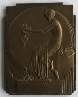 Médaille - Plaquette En Bronze Art Nouveau. A. Mauquoy. Reconnaissance. Union Professionnelle Des Opticiens. 60 X 80mm - Professionals / Firms