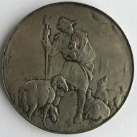 Médaille - Plaquette En Bronze. Josuë Dupon. Fédération Médicale Belge. 60 Mm - 96 Grm - Professionals / Firms