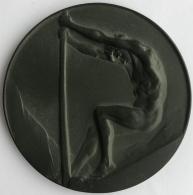 Médaille - Plaquette. Josuë Dupon. Haut Commissariat à La Sécurité De L'état. 75 Mm - 149 Grm - Professionals / Firms