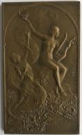 Médaille. Plaquette En Bronze. G. Devreese. Exposition Universelle Bruxelles 1910. 48 X 80mm - 96 Grm - Professionals / Firms