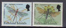 Falkland Islands - INSECTS 1984 MNH - Falkland