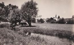 Carte 1948 BOISSY MAUGIS / VUE SUR L'HUISNE - France