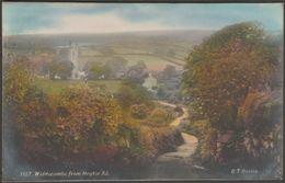 Widdecombe From Heytor Road, Devon, 1913 - G T Harris RP Postcard - England