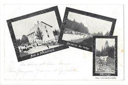 19352 - Asile De Molendruz La Montée Des Vaches Et Pâturage Multivues La Coudre 1901 - VD Vaud