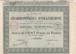 LOT DE 5 ACTION DE 100 FRS - COMPAGNIE DES CHARBONNAGES D'EKATHERINE -  1927 - Mines