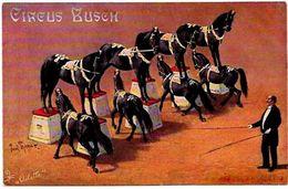 CPA Cirque Cirk Circus Non Circulé Cirque BUSCH Oilette Chevaux - Circus