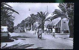 SAINT GERMAIN        DD D  1954 - Tunisie