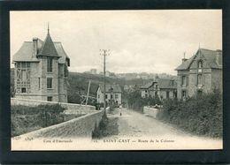 CPA - SAINT CAST - Route De La Colonne, Animé - Saint-Cast-le-Guildo