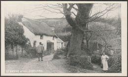 St Keyne Well, Liskeard, Cornwall, C.1903 - Botterell's Popular Series Postcard - England