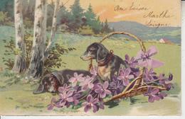 Carte Fantaisie Chiens Dans Un Panier - Honden
