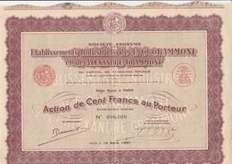 ACTION DE 100 FRANCS - ETABLISSEMENTS INDUSTRIELS DE E.C. GRAMMONT - ANNEE 1937 - Industry