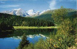 CPM  Hautes Pyrennées Lac De Payolle - France
