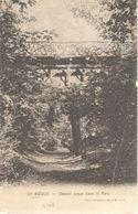 Le Roeulx - CPA - Chemin Creux Dans Le Parc - Le Roeulx