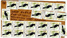 Lettre De Migowi Pour Willington_Hornbill - Malawi (1964-...)