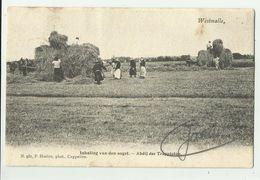 Westmalle   *  Abdij Der Trappisten - Inhaling Der Oogst  (Hoelen) - Malle