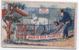 Chromo Ancien/Jardin Des Plantes/Confection/Bonneterie/Au Mouton Blanc/rue Du Fbg Saint Antoine/PARIS/Vers 1880   IMA351 - Cromo