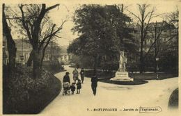 Montpellier Jardin De L' Esplanade Recto Verso - Montpellier