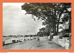 A675 / 163 44 - LA BAULE Esplanade Benoist - France