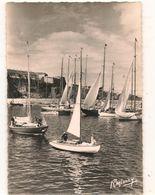 Belle Ile En Mer - Le Palais -   Rassemblement Avant Une Course -   CPSM° - Belle Ile En Mer
