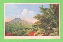 CPA FRANCE 972  ~  SAINT-PIERRE  ~   Le Mont Pelé Vu Des Propriétés Saint James  ( Guilhalmenc )  2 Scans - Martinique