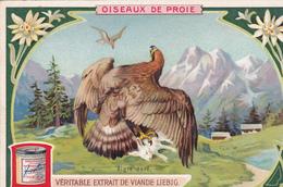 """CHROMO LIEBIG. OISEAUX DE PROIE. """" L'AIGLE DORE """". - Liebig"""