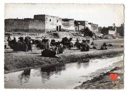 37275-ZE-TUNISIE-GABES-Caravane Au Repos - Tunisie