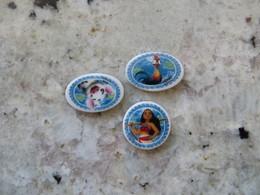 Lot De 3 Fève POCAHONTAS - Disney Vaiana - Pua - Heimei - Cartoons