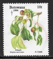 Botswana, Scott # 574 Used Edible Fruit, 1994 - Botswana (1966-...)