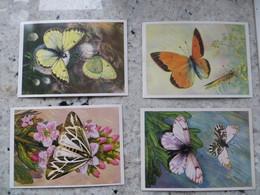 LOT DE 12 CPM Papillon Divers -voir Recto Légende Cyrillique Ed Mockba 1985 - Postcards