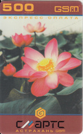 RUSSIA-ASTRAKHAN - Flower, Smarts/Astrakhan GSM Prepaid Card 500 Rub., Used - Russia