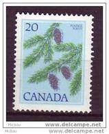 Canada, 1977, #718, Sapin, Arbre, Tree, Spruce - 1952-.... Règne D'Elizabeth II