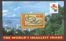 BARBADOS 2000   Thread Snake And Hong Kong 2001 Stamp Exhibition Souvenir Sheet  - UM - MNH - Barbados (1966-...)