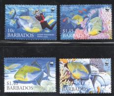 BARBADOS 2006  C Fishes  WWF Issue Set Of 4 UM - MNh - Barbados (1966-...)