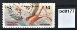 Bd0177 Gefährdete Tiere, Petaurista P., Taguan, Gleithörnchen, Bangladesh 1991 - Bangladesh