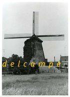 HAMME (O.Vl.) - Molen/moulin - Echte Foto 13x18 Cm Van 'De Grote Napoleon' In 1973 (in Verval, Vóór De Restauratie) - Places