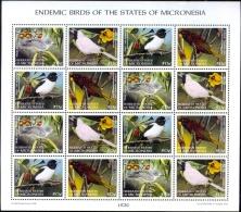 BIRDS-ENDEMIC BIRDS OF THE STATES OF MICRONESIA-SHEET-SCARCE-MNH--M-216 - Climbing Birds
