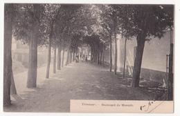 Tienen: Boulevard Du Moespik. - Tienen