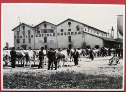1998 CASARSA DELLA DELIZIA 50^ SAGRA DEL VINO // Wine - Vin - Wein - Manifestazioni