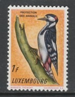 TIMBRE NEUF DU LUXEMBOURG - PROTECTION DES ANIMAUX : PIC EPEICHE N° Y&T 595 - Climbing Birds